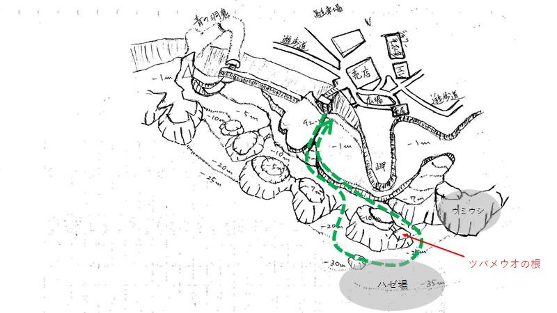 真栄田岬のルート案(ハゼ場)