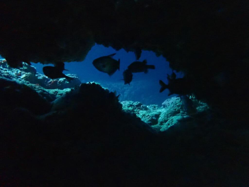 真栄田岬の地形