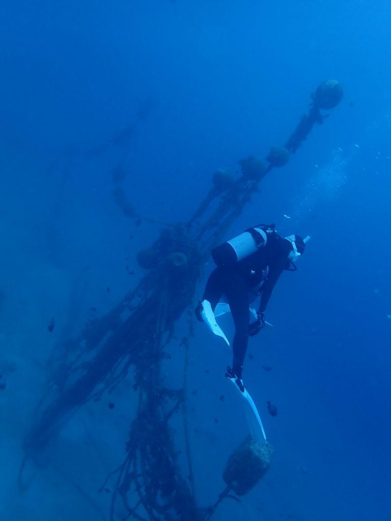 なかゆくいの魚網